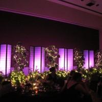 SIU Ballroom IMG_1618